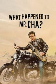 What Happened to Mr Cha?